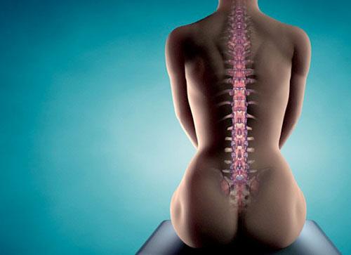 cura osteoporosi con la maca rossa