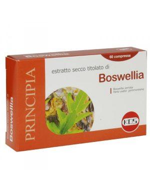boswelia kos